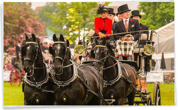 Suffolk Show Horse and Carriage